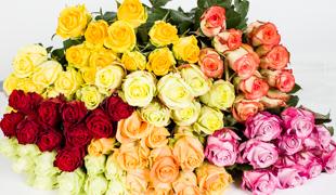 Vágott virágok